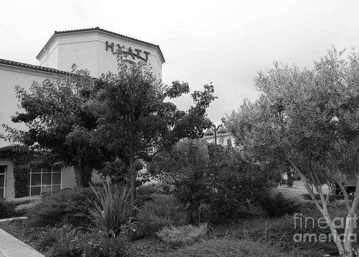 Santa Rosa Greeting Card featuring the photograph Vineyard Creek Hyatt Hotel Santa Rosa California 5d25795 Bw by Wingsdomain Art and Photography