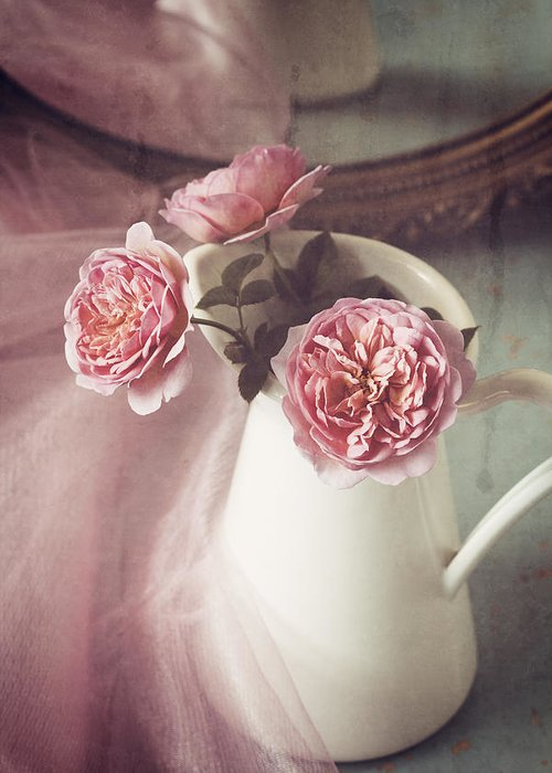 Rose Greeting Card featuring the photograph Vintage Pink by Amy Weiss