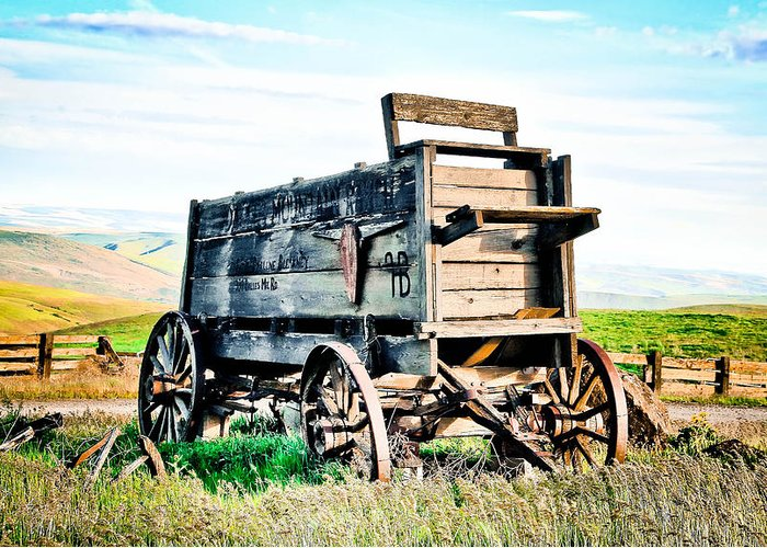 Covered Wagon Greeting Card featuring the photograph Vintaged Covered Wagon by Athena Mckinzie