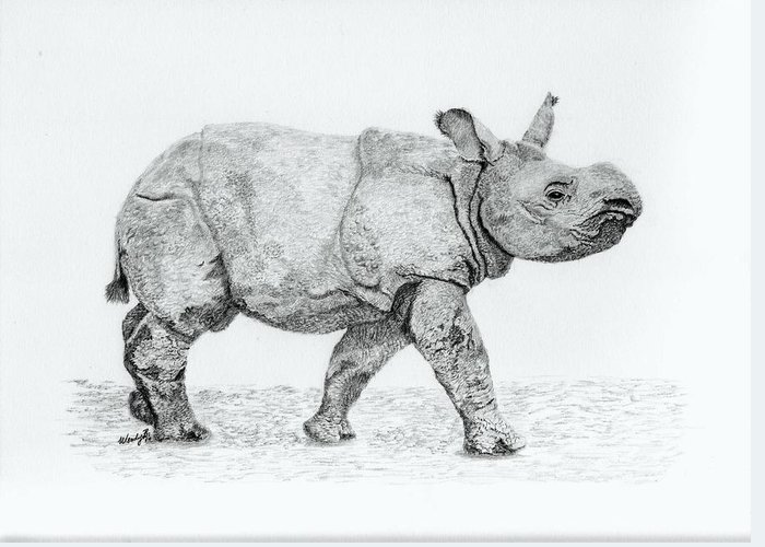 Baby Rhino Greeting Card featuring the drawing Wait Up Mom by Wendy Brunell