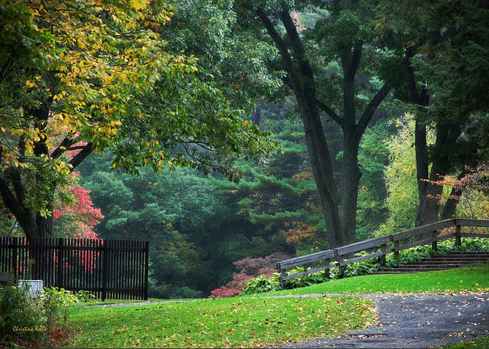Fall Greeting Card featuring the photograph Walk In The Park by Christina Rollo