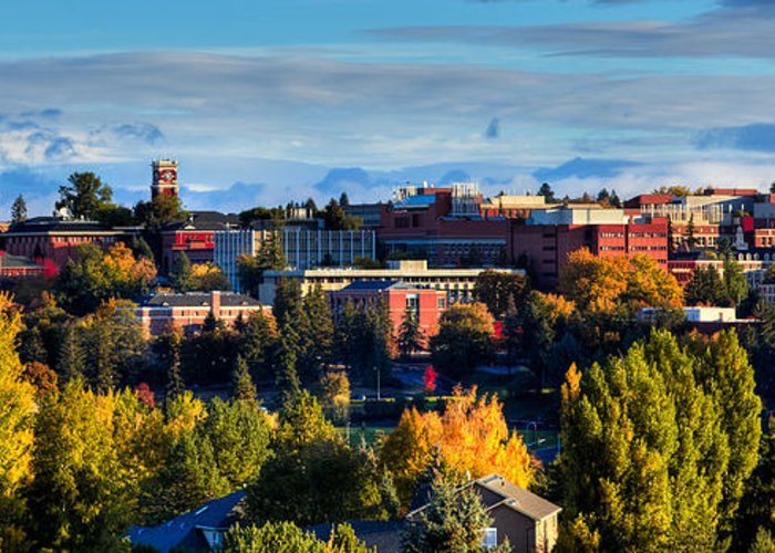 Washington State University Greeting Card featuring the photograph Washington State University In Autumn by David Patterson