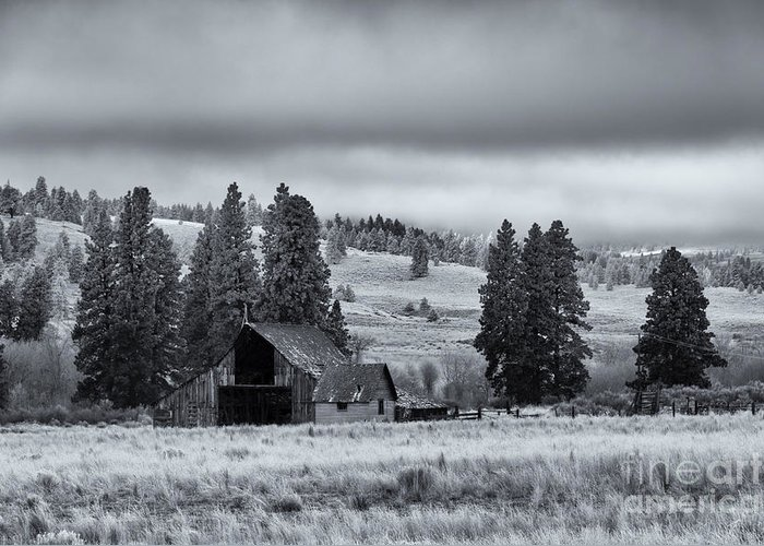 Barn Greeting Card featuring the photograph Weathered Beneath The Storm by Mike Dawson