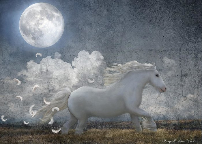 Equine Greeting Card featuring the photograph White Feathered Moon by Terry Kirkland Cook