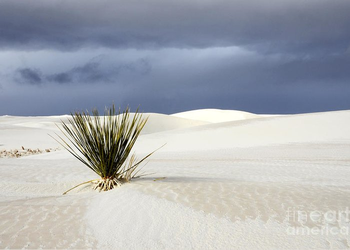 Alamagordo Greeting Card featuring the photograph White Sands Dark Sky by Bob Christopher