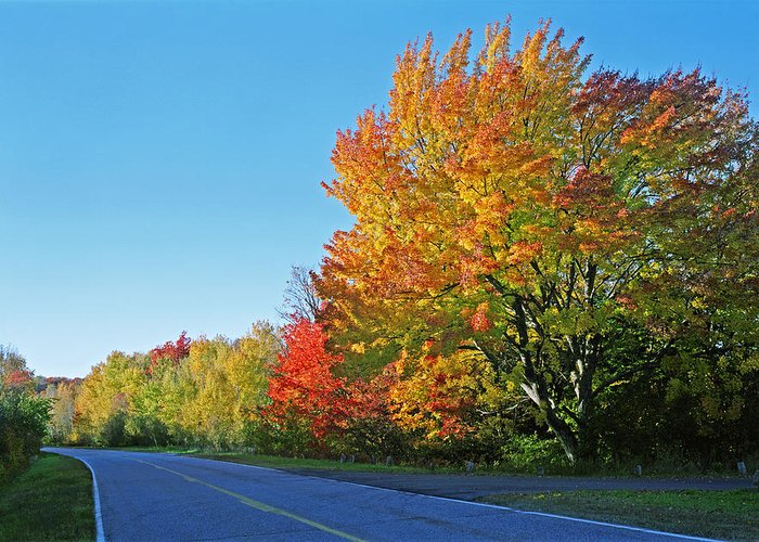 Whitfish Bay Scenic Byway Greeting Card featuring the photograph Whitefish Bay Scenic Byway by James Rasmusson