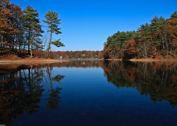 Pond Greeting Card featuring the photograph Whites Pond by Corey Sheehan