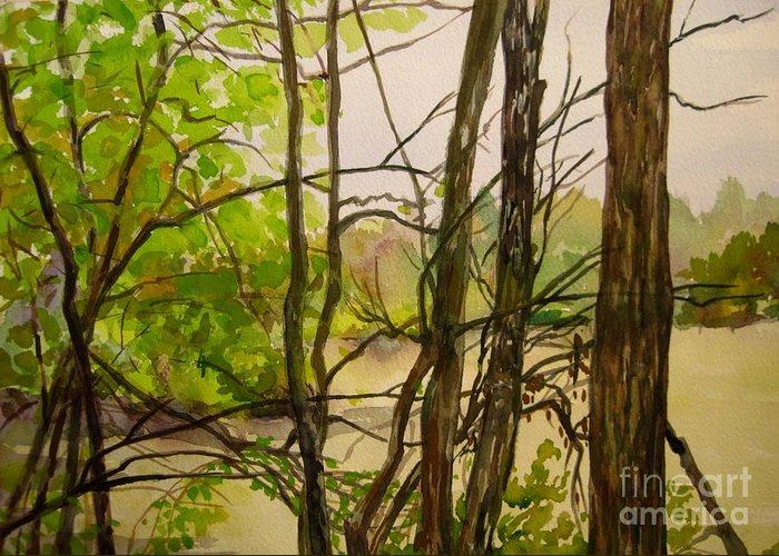 Whitewater Memorial State Park Greeting Card featuring the painting Whitewater Memorial State Park by Katrina West