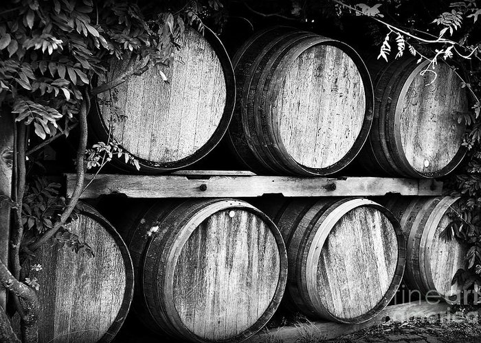 Wine Greeting Card featuring the photograph Wine Barrels by Scott Pellegrin