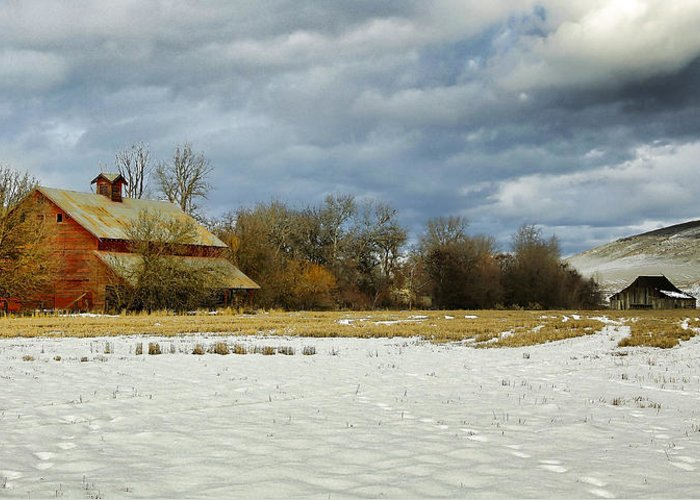Cabin Greeting Card featuring the photograph Winter Farm by Steve McKinzie