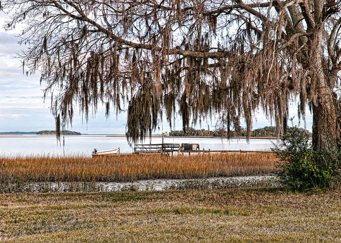 Spanish Moss Greeting Card featuring the photograph Winter High Tide by Scott Hansen