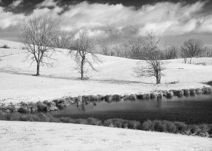 Kentucky Greeting Card featuring the photograph Winter In Kentucky by Wendell Thompson