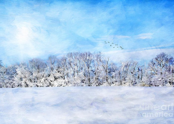 Beautiful Greeting Card featuring the photograph Winter Landscape by Darren Fisher
