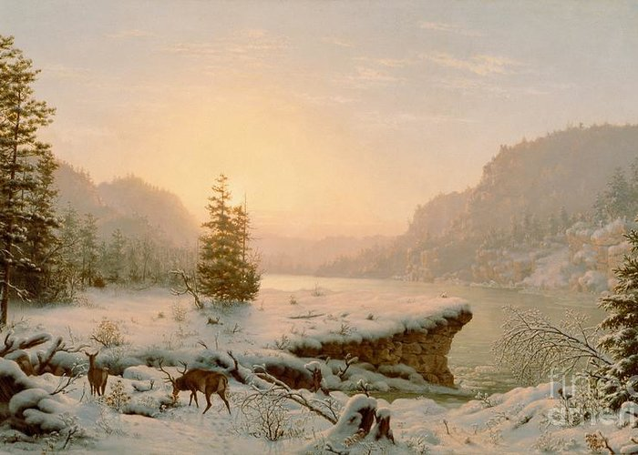 Scene; Remote; American; Landscape; Countryside; Rural; Wilderness; Deer; Animal; Animals; Nature; Snow; Snow-covered; Fir-tree; Fir; Tree; Trees; Firs; Lake; River; Dawn; Dusk; Morning; Evening; Sunrise; Sunset; Atmospheric; Beauty; Beautiful; Spectacular; Majestic; Buck Greeting Card featuring the painting Winter Landscape by Mortimer L Smith