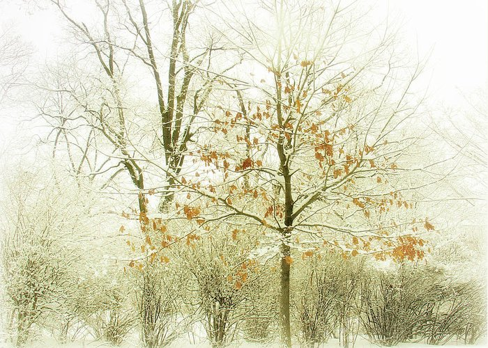 Winter Greeting Card featuring the photograph Winter Leaves by Julie Palencia