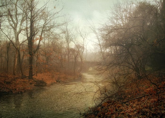 Winter Greeting Card featuring the photograph Winter Mist by Jessica Jenney