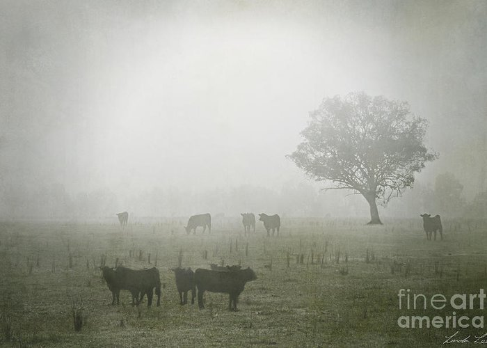 Winter Greeting Card featuring the photograph Winter Morning Londrigan 5 by Linda Lees