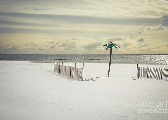 Coney Island Greeting Card featuring the photograph Winter Paradise by Evelina Kremsdorf