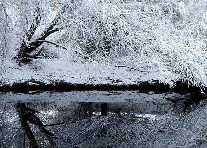 Outdoors Greeting Card featuring the photograph Winter Reflections by Steven Milner
