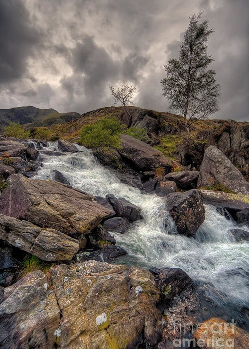 Capel Curig Greeting Card featuring the photograph Winter Stream by Adrian Evans