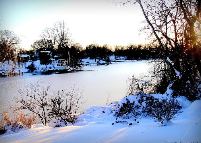 Winter Landscape Greeting Card featuring the photograph Winter Wonderland In Maryland Usa by Danielle Parent