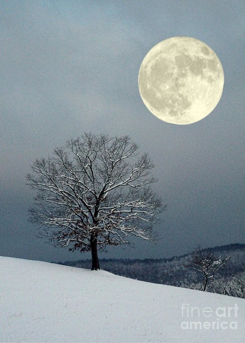 Moon Greeting Card featuring the photograph Winter's Moon by Laurinda Bowling