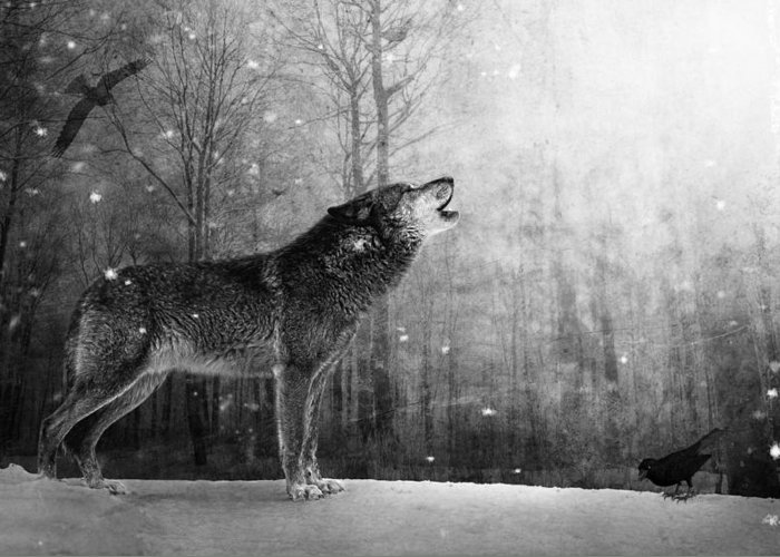 Wolf Greeting Card featuring the photograph Wolfheart by Marc Huebner
