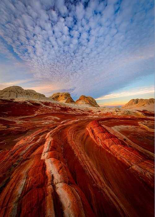 White Pocket Greeting Card featuring the photograph Wonderland by Joseph Rossbach