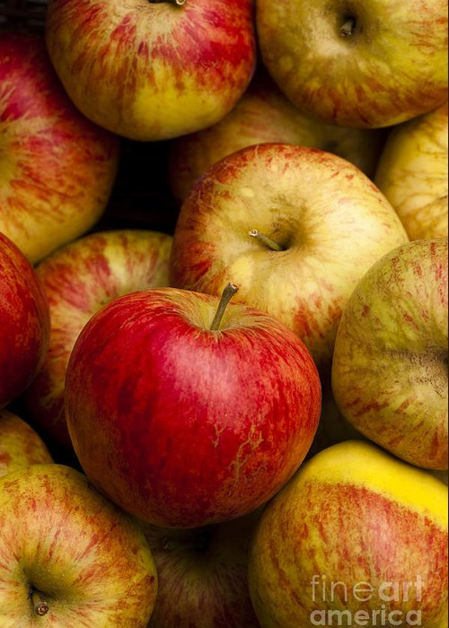 Apple Greeting Card featuring the photograph Worcester Pearmain by Anne Gilbert