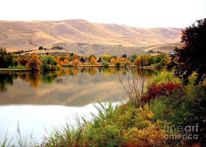 Prosser Greeting Card featuring the photograph Yakima River Autumn by Carol Groenen