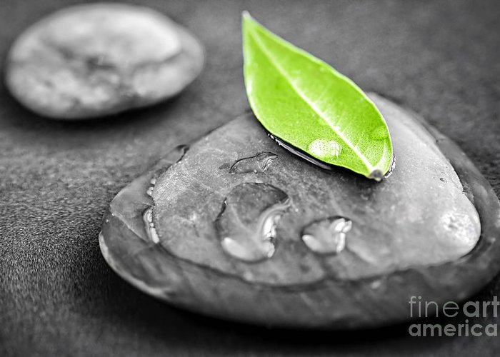 Stone Greeting Card featuring the photograph Zen Stones by Elena Elisseeva