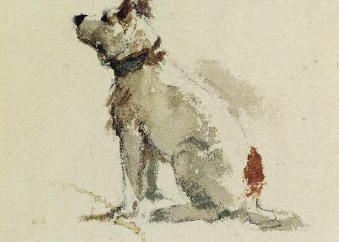Terrier Greeting Card featuring the painting A Terrier - Sitting Facing Left by Peter de Wint