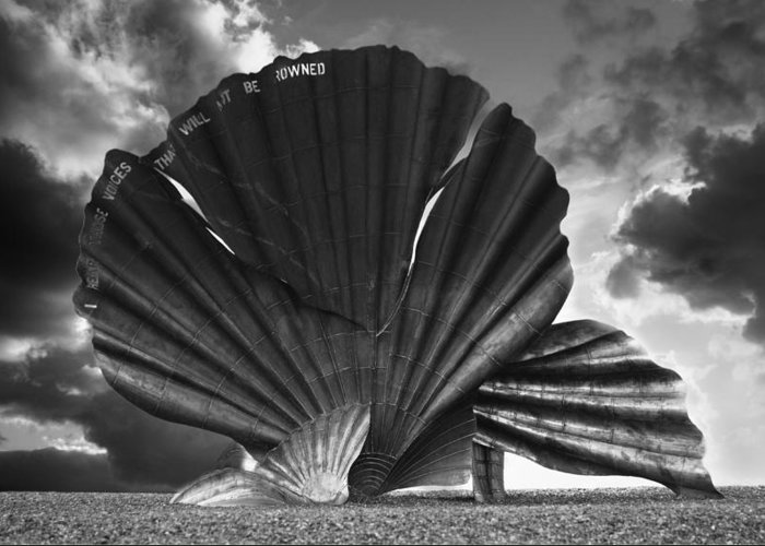 Aldeburgh Greeting Card featuring the photograph Aldeburgh Scallop by Darren Burroughs