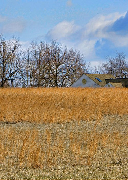 Bucks County Greeting Card featuring the photograph Artist In Field by William Jobes