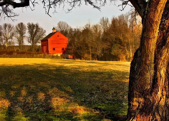 Country Greeting Card featuring the photograph Country Life by Susan Candelario
