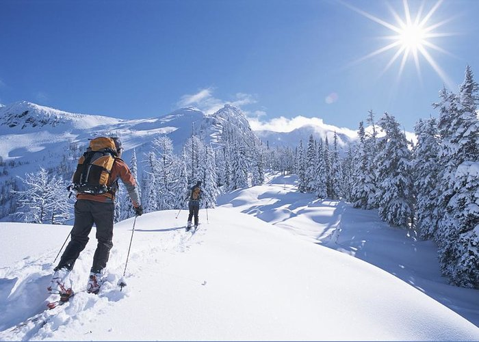 Sports Greeting Card featuring the photograph Cross-country Skiers In The Selkirk by Jimmy Chin
