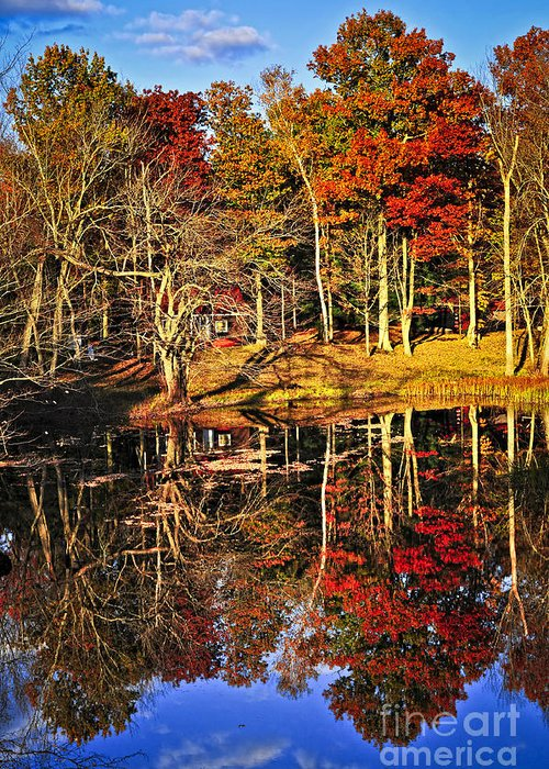 Lake Greeting Card featuring the photograph Fall Forest Reflections by Elena Elisseeva