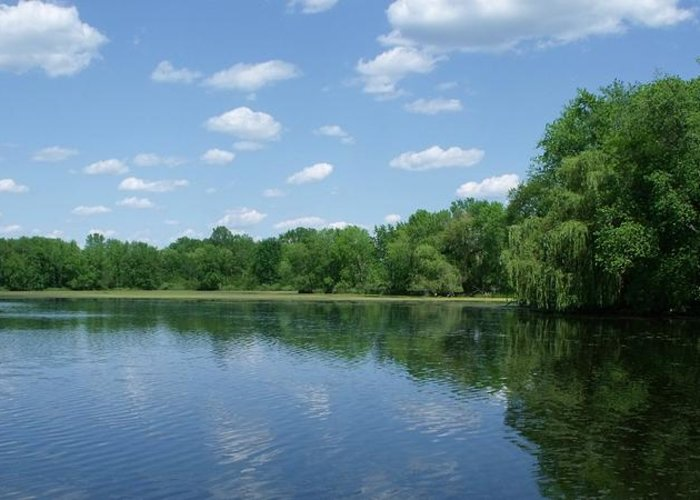 Water Greeting Card featuring the photograph Harris Pond by Anna Villarreal Garbis