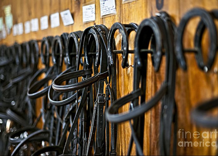Bridles Greeting Card featuring the photograph Horse Bridles Hanging In Stable by Elena Elisseeva