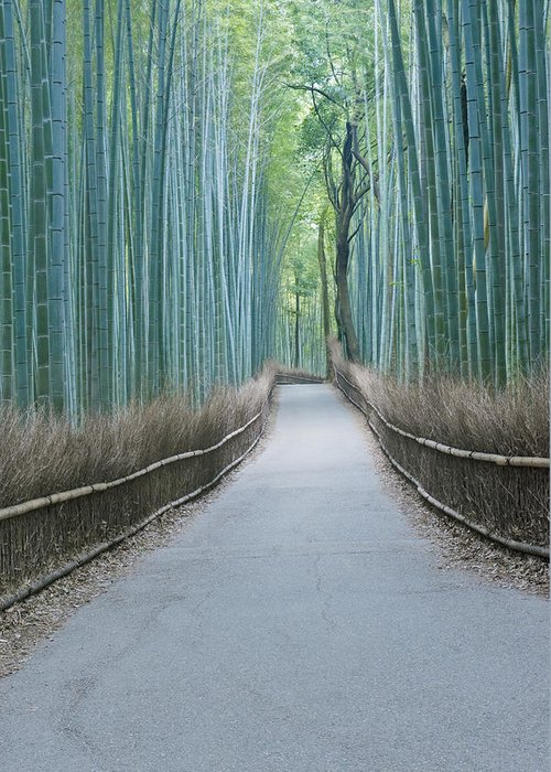 Photography Greeting Card featuring the photograph Japan Kyoto Arashiyama Sagano Bamboo by Rob Tilley