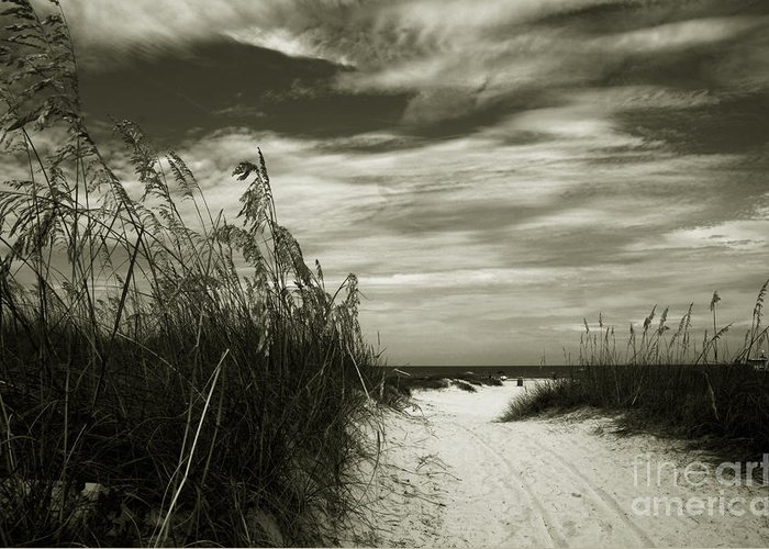 Landscape Greeting Card featuring the photograph Let's Go To The Beach by Susanne Van Hulst