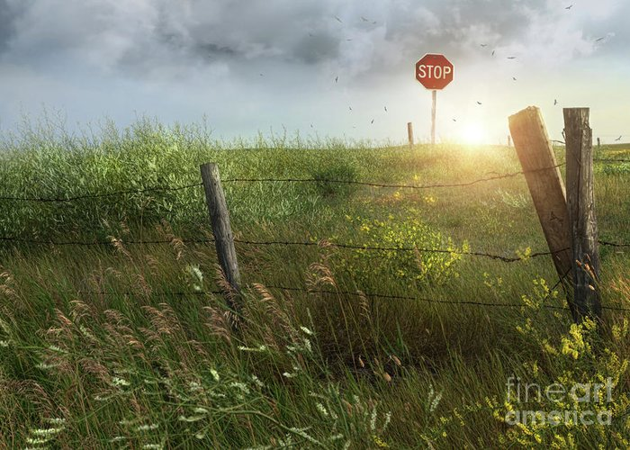 Beautiful Greeting Card featuring the photograph Old Country Fence On The Prairies by Sandra Cunningham