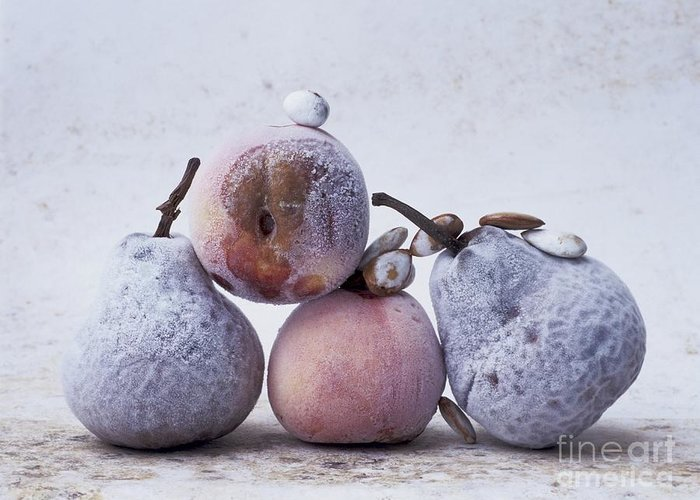 Studio Greeting Card featuring the photograph Pears And Apples by Bernard Jaubert