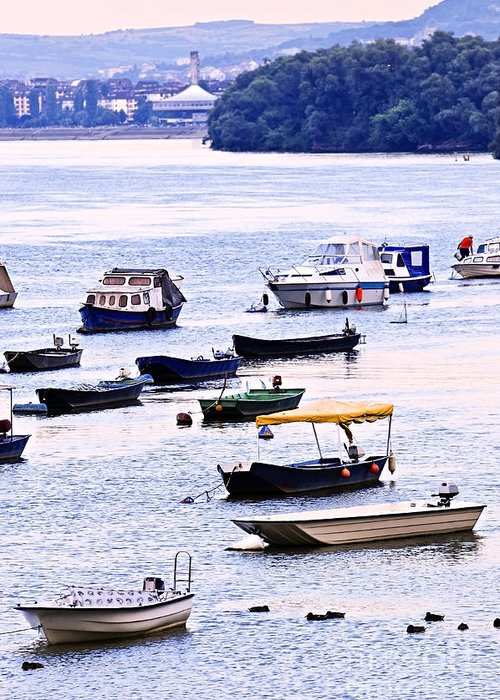 Boats Greeting Card featuring the photograph River Boats On Danube by Elena Elisseeva
