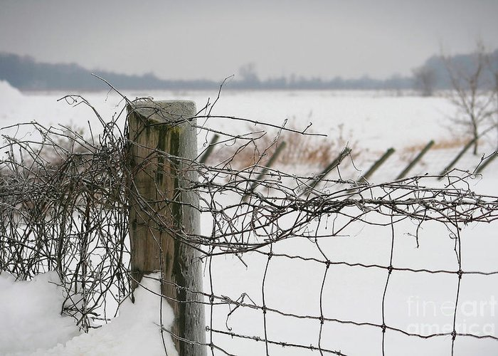 Cloud Greeting Card featuring the photograph Snow Fence by Sandra Cunningham