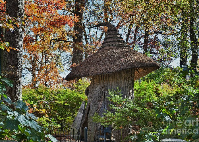 Enchanted Woods Greeting Card featuring the photograph Winterthur Gardens by John Greim