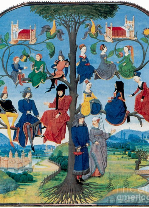 Genealogy Greeting Card featuring the photograph 15th-century Family Tree by Photo Researchers
