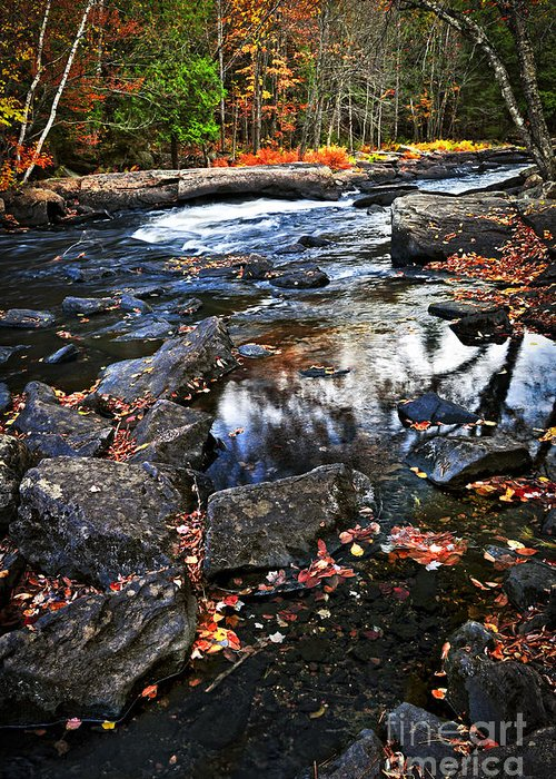 Autumn Greeting Card featuring the photograph Fall Forest And River Landscape by Elena Elisseeva