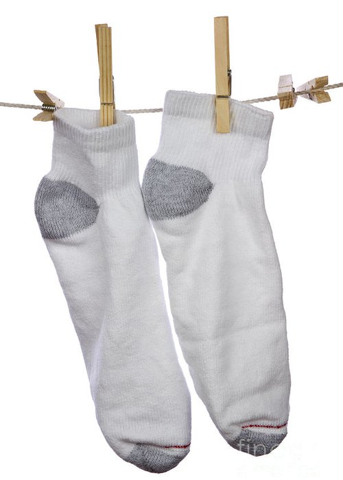 Socks Greeting Card featuring the photograph Socks by Blink Images
