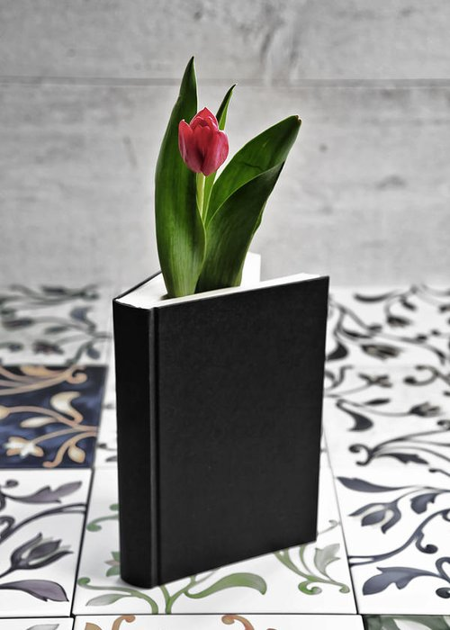 Tulip Greeting Card featuring the photograph Tulip In A Book by Joana Kruse